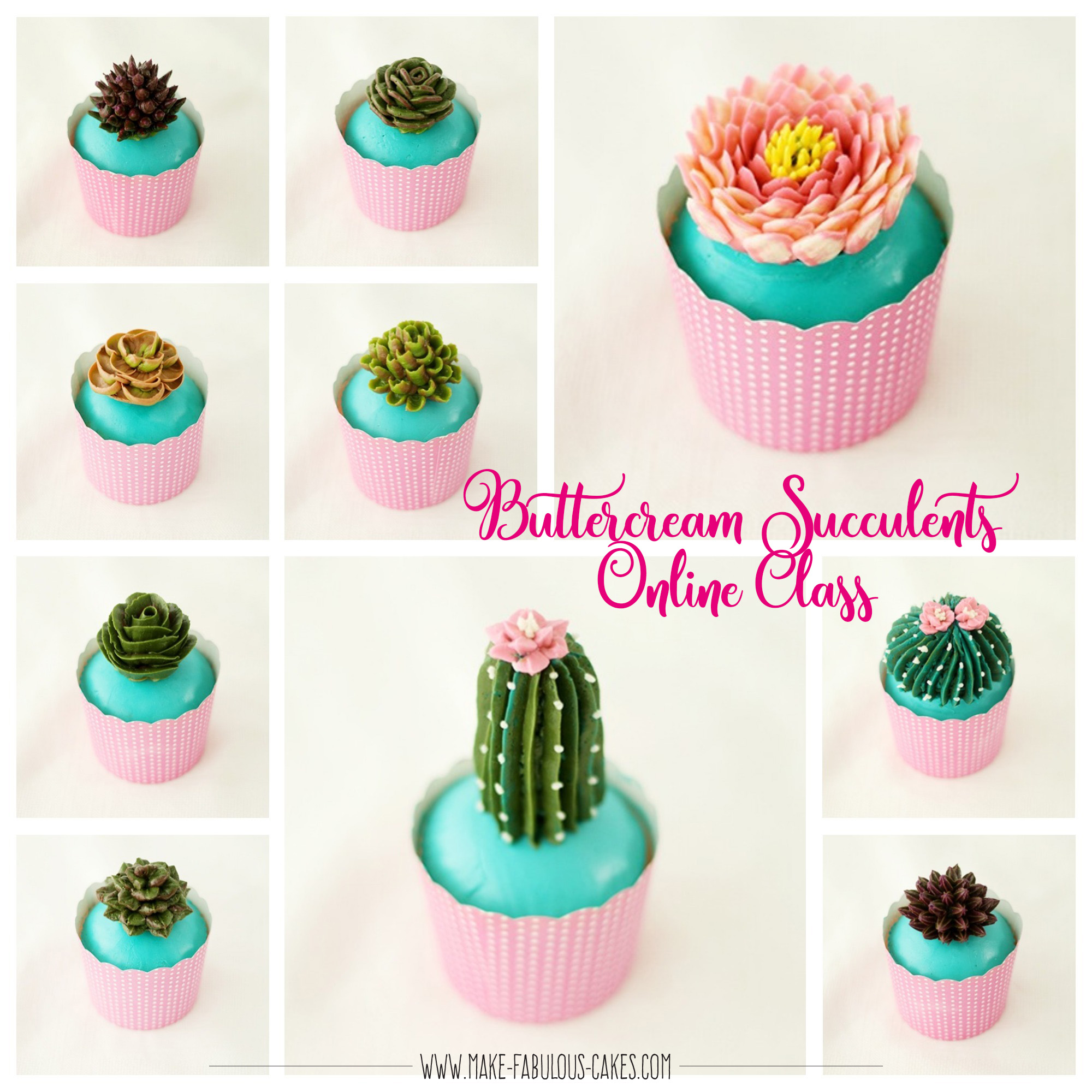 edible succulents