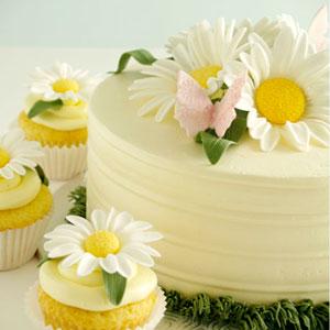 Miraculous Birthday Cakes Funny Birthday Cards Online Alyptdamsfinfo