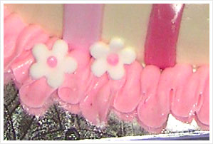princess cake border detail