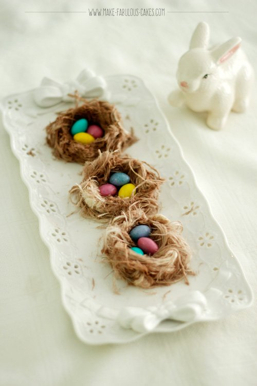 edible bird's nest