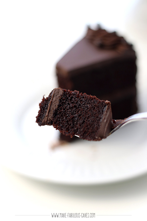 chocolate cake bite